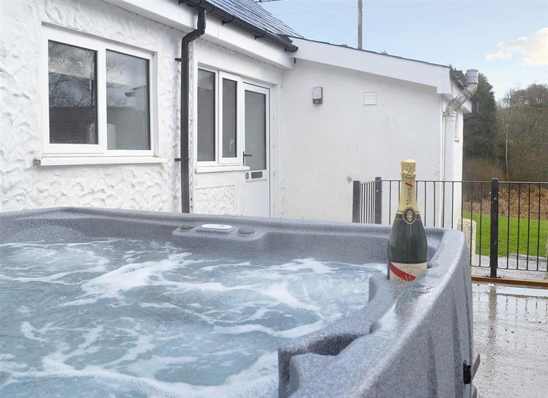 Maesydderwen Holiday Cottages - Kingfisher, near Llandeilo, Carmarthenshire - Dyfed