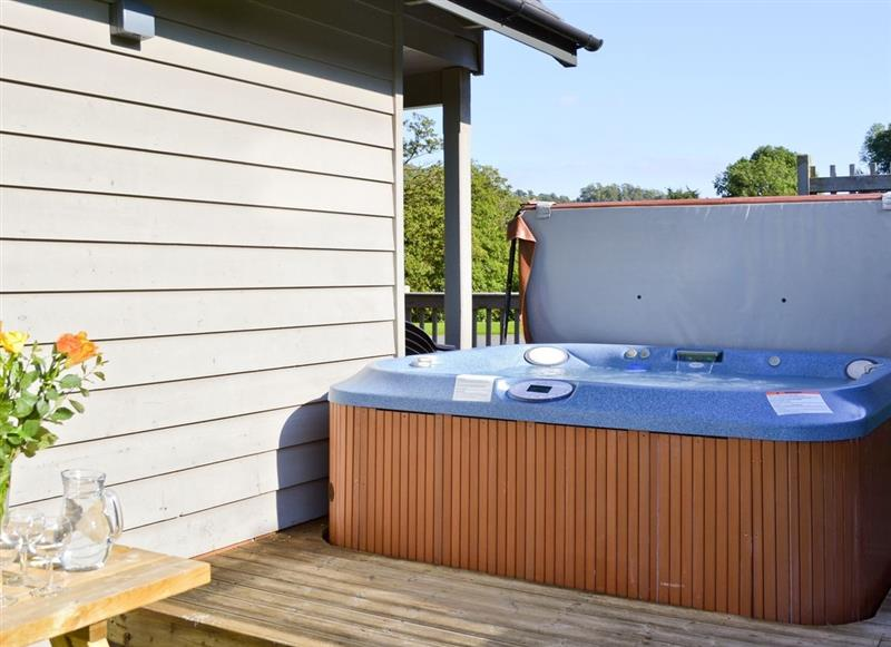 Mill Race Lodges - Lodge 2, Llangunllo nr. Knighton - Powys