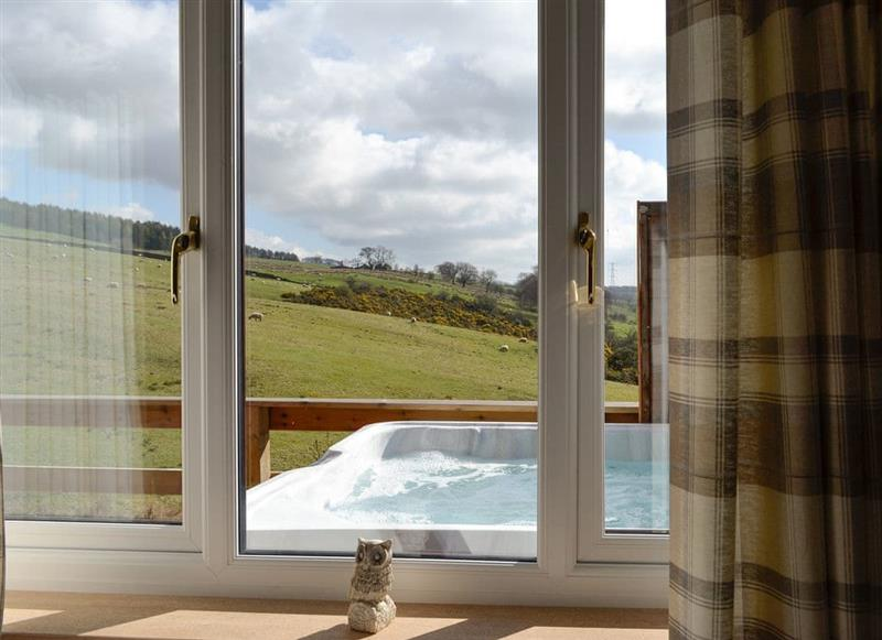 Woodburn Lodges - The Spey, Milton of Campsie, near Kirkintilloch, Glasgow and the Clyde Valley - Lanarkshire